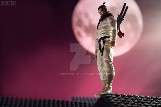 White Ninja Under The Moon