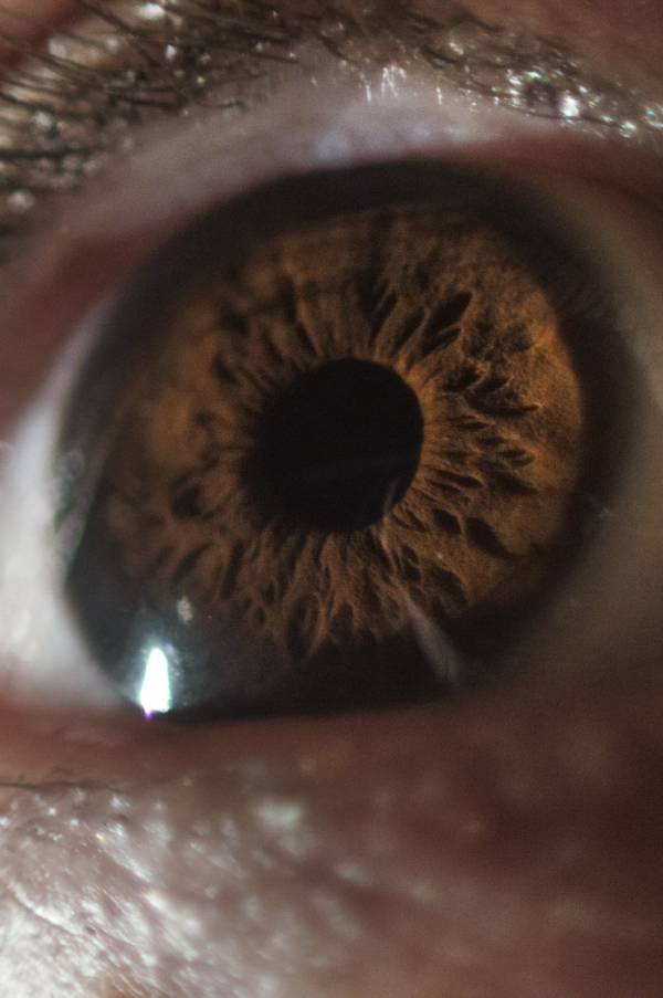 Eye by tomhotovy