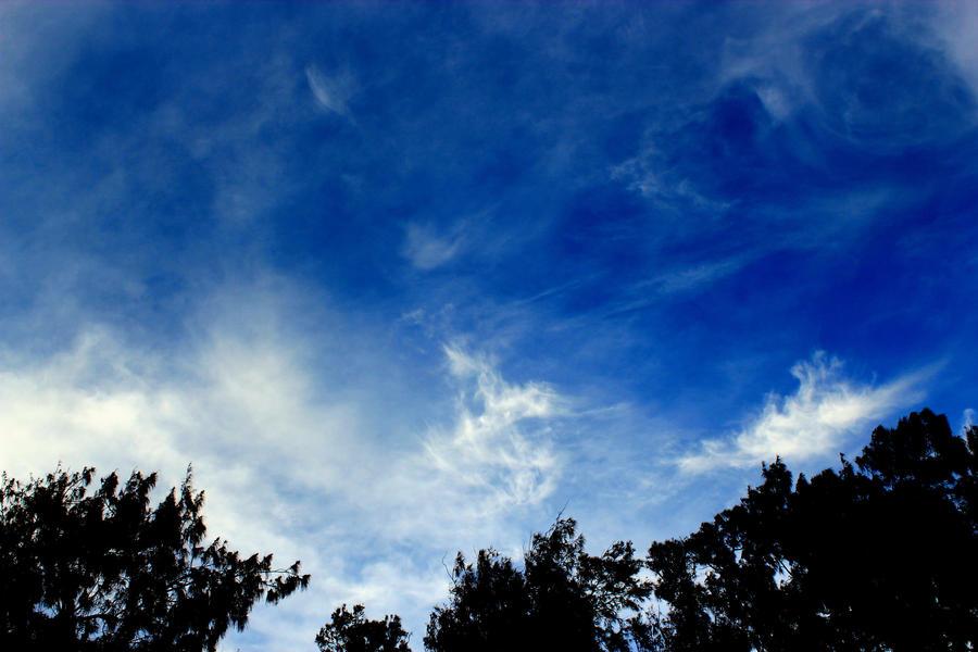 blue sky by Sale7