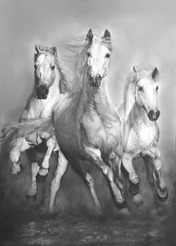 running horses charcoal drawing (100*70)cm