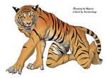 Tigerprowl