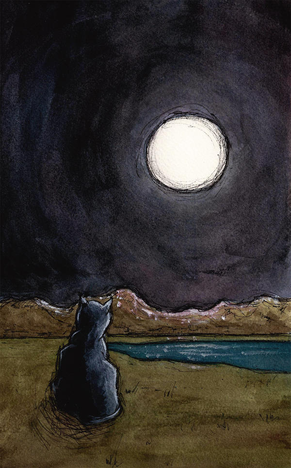 The Cat and The Moon - Rough by Brandon-Schaefer