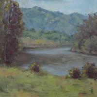Lake Solano In Spring