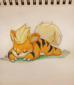 Growlithe nap