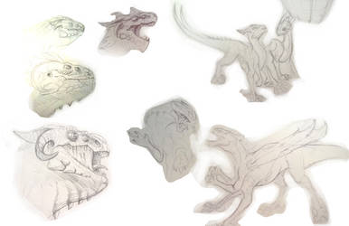 Early Macro sketches