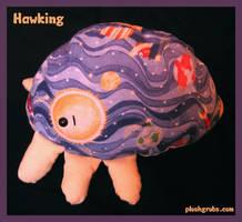 Hawking by blushplush