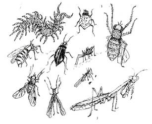 Random Illustration Flash Sheet Vl: Bugs by Hebbybobdige