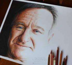 Robin Williams - WIP