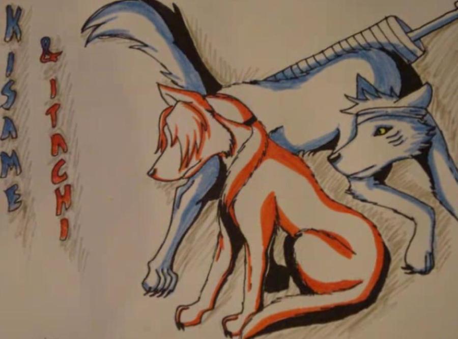 Dog style: kisame and Itachi by XxXYunaXxXRavenXxX