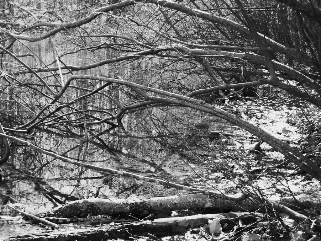 Wintery Reach by KDMB