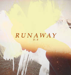 Runaway DS by sky-spree