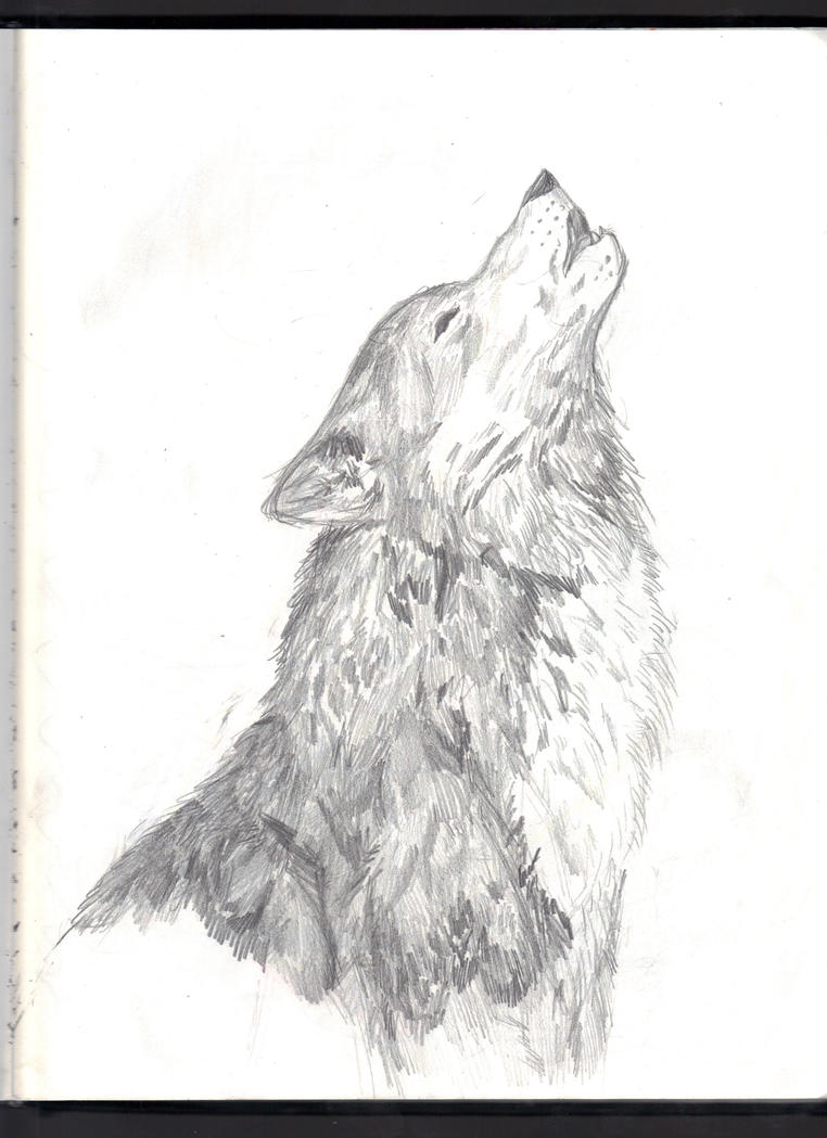 howling wolf to moon drawing