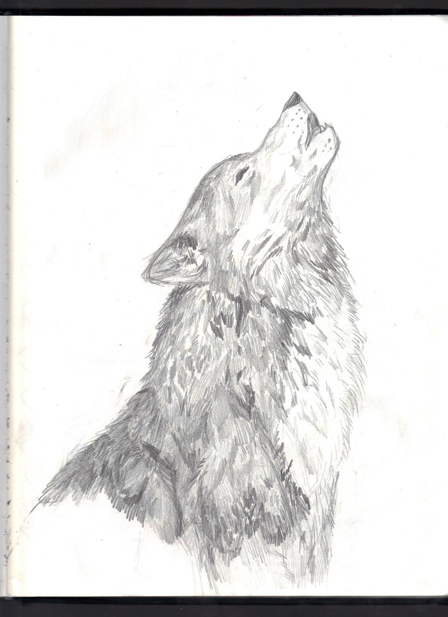How To Draw A Wolf Howling Step 2 Howling At The Moon By Brokenemeralds  Howling At