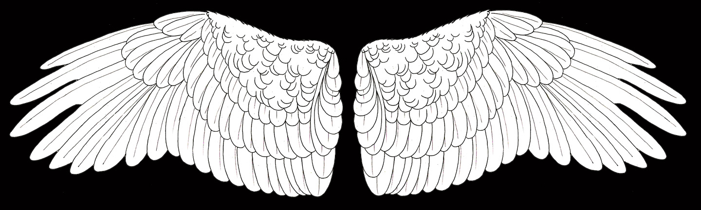 White Angel Wings by LuthienNightwolf