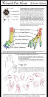 Paw-Hand Tutorial