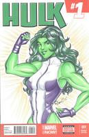 She Hulk blank cover by AerianR
