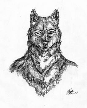 Lines and wolves