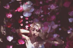 Floral Rain by kamakebelieve