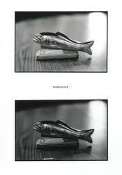 Fish Stapler by Illusionsofthespleen