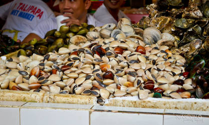 shellfish for sale by nikorio