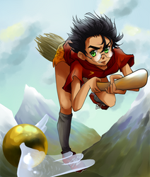 Quidditch Practice by masaothedog