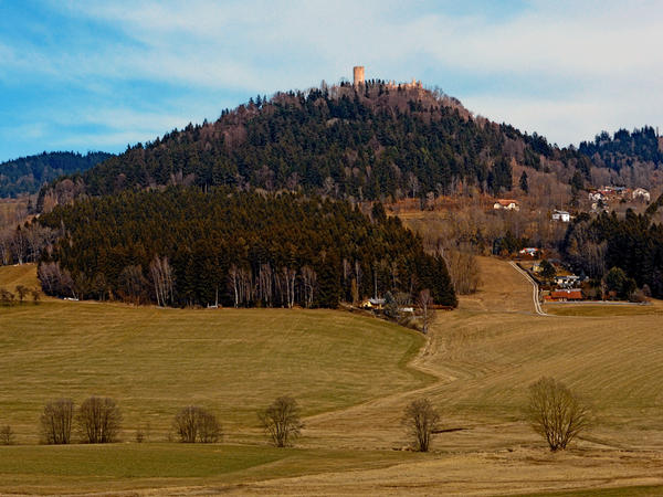 Scenery with forest and castle by patrickjobst