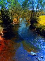 Vibrant river in autumn season