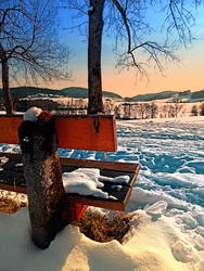 View into winter scenery