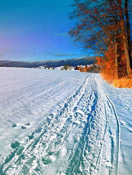 Hiking through a sunny winter scenery