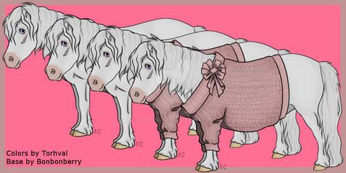 OPEN Adoption: White Shetland Pony