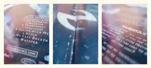 CD Photography - Fallen