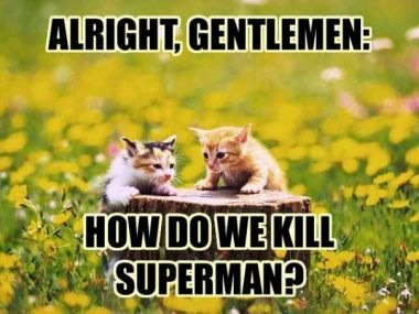 lolcats kill superman by sunny3