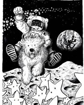 Space Shepherd.