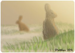 Foggy Morning Hares aceo by S-Matthews