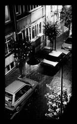 RainRainRain . . by bwclub