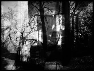 027 by Lucretia-Raveness by bwclub