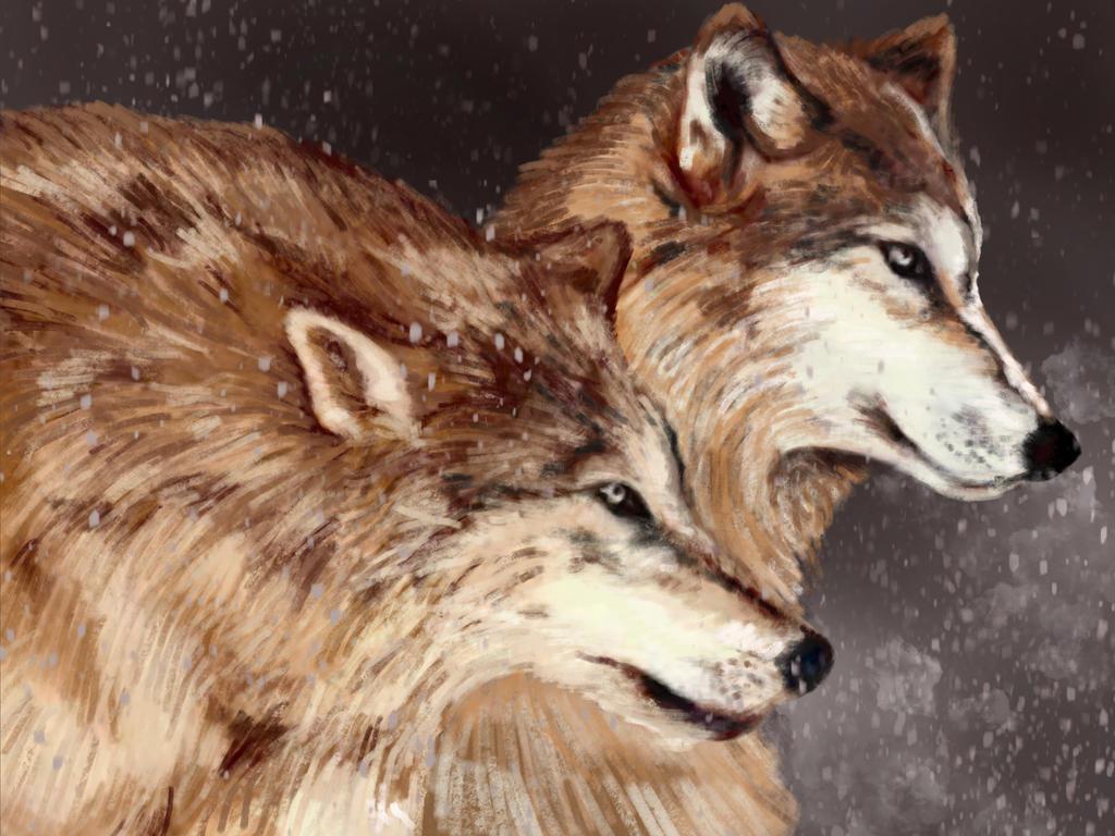 Wolf by Poiyoguaa
