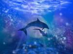 Dolphin moon sea