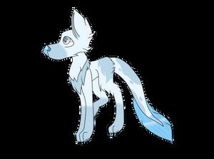Eishund (Original Species Concept)