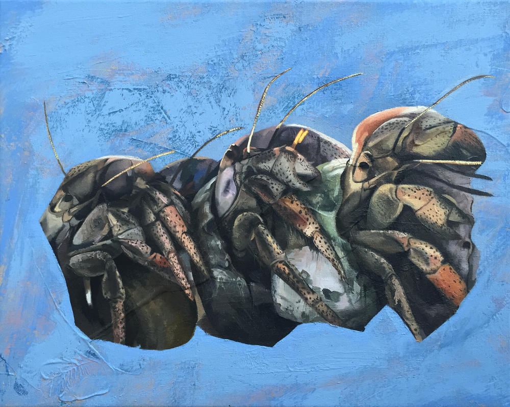 Hermit crabs by Andrewnewtonart