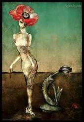 poppy fild by Myruso