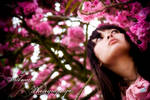 Cherry Blossom Princess II