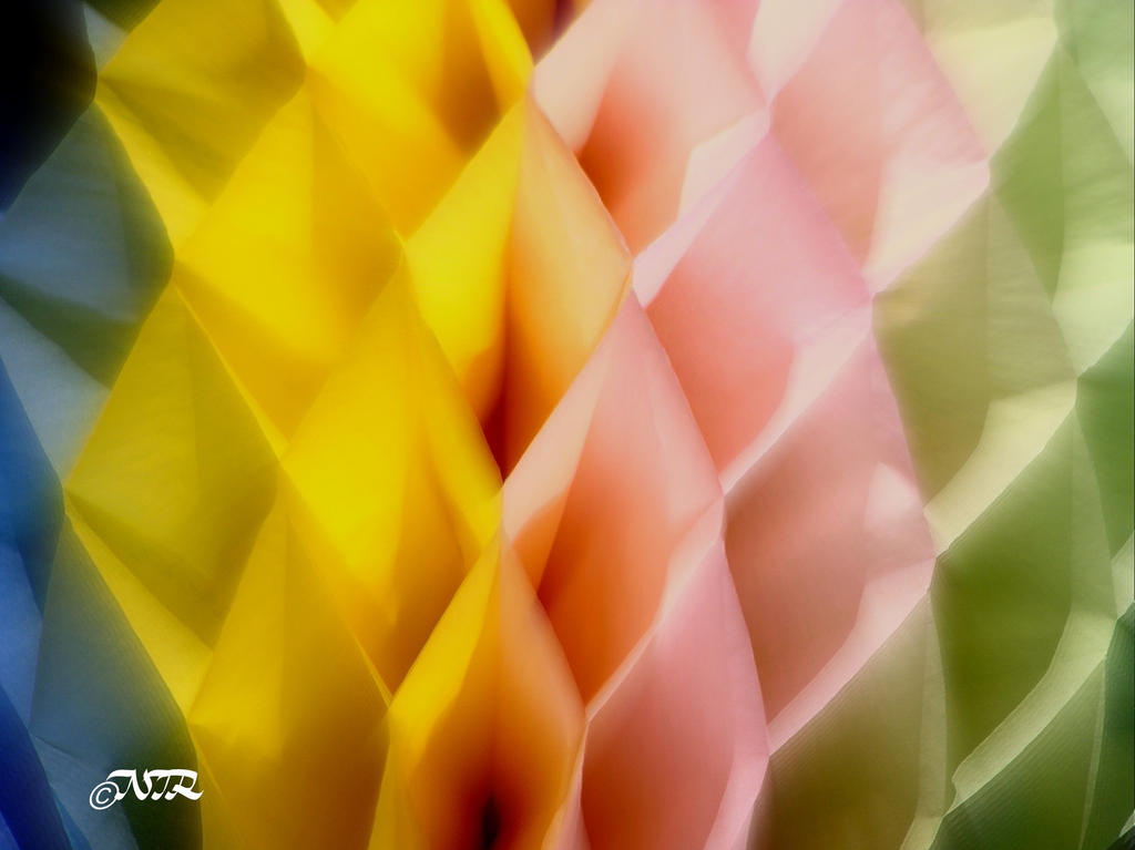 Honeycomb by igarcia