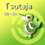 Tsutaja