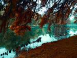 The Lake of Dreams by AutumnIulia