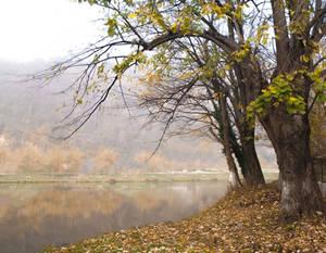 I love the feeling of Autumn by AutumnIulia
