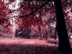 You return like autumn and I fall every time by AutumnIulia