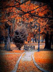 Falling leaves, long walks and warm drinks