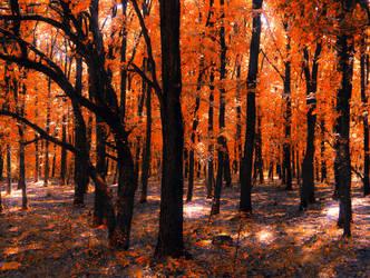 I have an Autumn Soul by AutumnIulia
