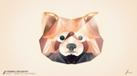 NCM7 - Spirit of the Panda